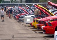 Charity event brought over 2600 Mustangs at Maple Grove Raceway!