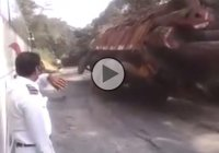 Bizarre video: Overloaded truck falls off a cliff!