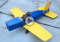 Model plane with manual controls hijacked by a squirrel!! :)