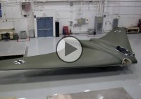 Horten Ho 229, Hitler's infamous stealth bomber plane was recreated!