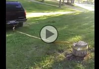 Tree trunk removal fail! Karma is one nasty lady! :)