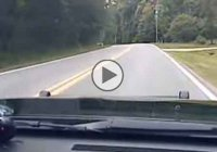 A K9 officer flips and crashes the car during a motorcycle chase!