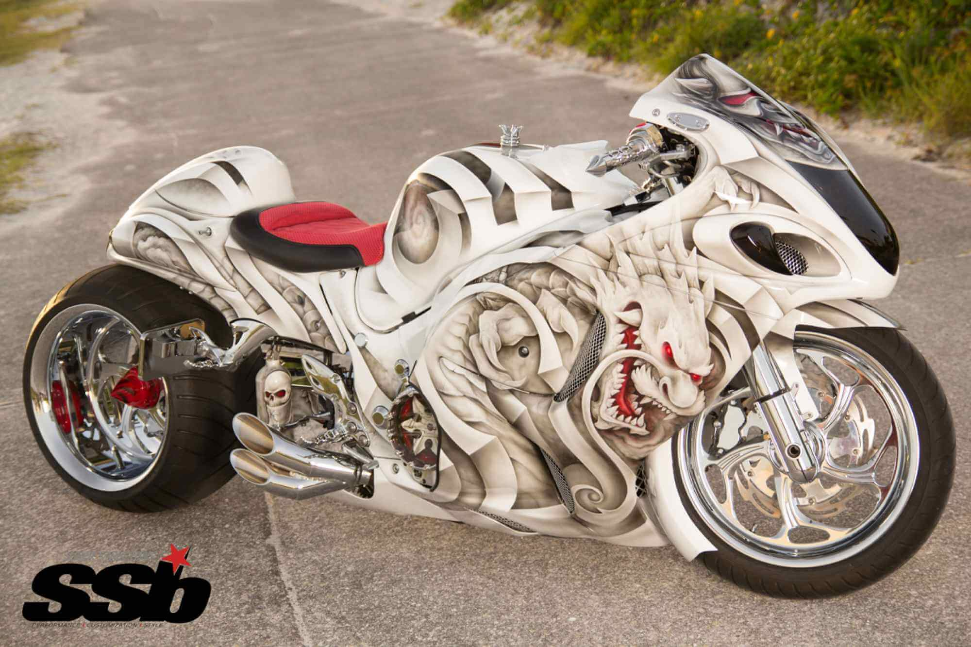 Custom Hayabusa Pictures 71