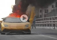 Meanwhile in Dubai: A Lambo Aventador meets a fiery end after revving up the engine!