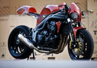 Weslake Triumph Speed Triple T509 By Olivi Motori!