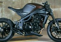 Simple N Perfect – Triumph Speed Triple 1050 Speed Racer