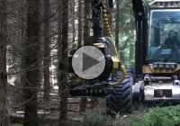 Incredible Tree Cutting Machine – Kesla 28RH!