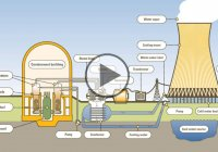 How Do Nuclear Plants Work? – Working Principles Of Pressurized Water Nuclear Reactor!