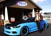 Richard Petty Mustang GT is a marvelous limited edition piece of art