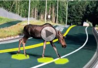 Solar freakin roadways – Futuristic technology that can replace the asphalt!