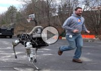 The Four-Legged Robot SPOT, a New Advancement In Military Robots!